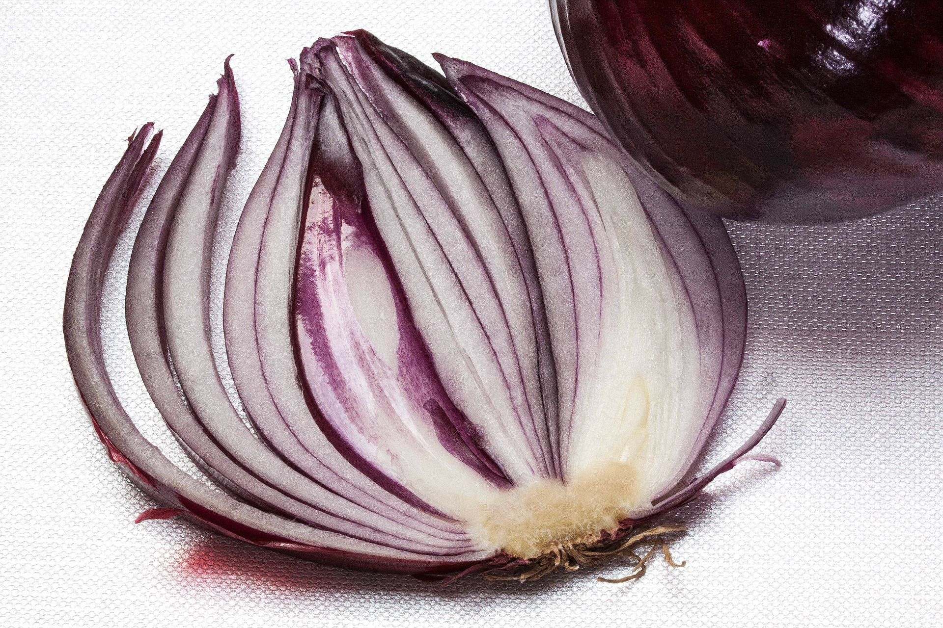 layers of an onion